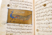 Libro de la Utilidad de los Animales, ms. árabe 898 - Real Biblioteca del Monasterio (San Lorenzo de El Escorial, Spain) − photo 8