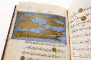 Libro de la Utilidad de los Animales, ms. árabe 898 - Real Biblioteca del Monasterio (San Lorenzo de El Escorial, Spain) − photo 9