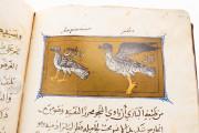 Libro de la Utilidad de los Animales, ms. árabe 898 - Real Biblioteca del Monasterio (San Lorenzo de El Escorial, Spain) − photo 11