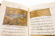 Libro de la Utilidad de los Animales, ms. árabe 898 - Real Biblioteca del Monasterio (San Lorenzo de El Escorial, Spain) − photo 12