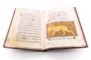 Libro de la Utilidad de los Animales, ms. árabe 898 - Real Biblioteca del Monasterio (San Lorenzo de El Escorial, Spain) − photo 17