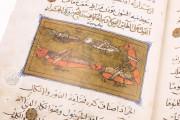 Libro de la Utilidad de los Animales, ms. árabe 898 - Real Biblioteca del Monasterio (San Lorenzo de El Escorial, Spain) − photo 20