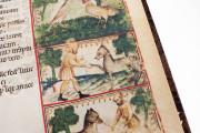 Aesop's Fables, Bologna, Biblioteca Universitaria di Bologna, Ms. 1213 − Photo 10