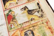 Aesop's Fables, Bologna, Biblioteca Universitaria di Bologna, Ms. 1213 − Photo 19