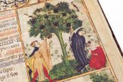 Aesop's Fables, Bologna, Biblioteca Universitaria di Bologna, Ms. 1213 − Photo 21