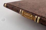 Aesop's Fables, Bologna, Biblioteca Universitaria di Bologna, Ms. 1213 − Photo 30