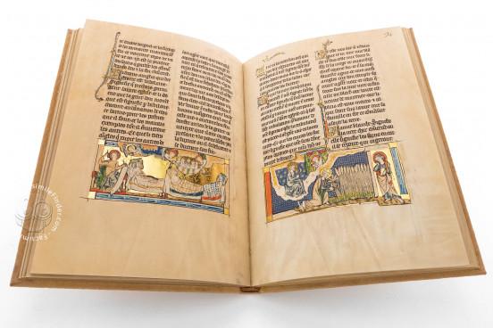 Apocalypse of Lorraine, Dresden, Sächsische Landesbibliothek - Staats - und Universitätsbibliothek, Mscr.Dresd.Oc.50 − Photo 1