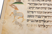 Ashkenazi Haggadah, London, British Library, Add. MS 14762 − Photo 5