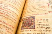Liber Magistri, Piacenza, Archivio Capitolare della Cattedrale − Photo 8