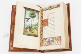 Medici Aesop Facsimile Edition