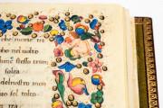 Francesco Petrarca. Trionfi, Rome, Biblioteca dell'Accademia Nazionale dei Lincei e Corsiniana, 55.K.10 (Cors. 1081) − Photo 11