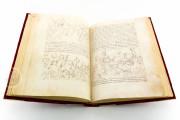 Tavola Ritonda, ms. Palatino 556 - Biblioteca Nazionale Centrale (Florence, Italy) − photo 12