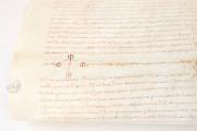 Act of the Court of Cervera, Cervera, Arxiu Comarcal de la Segarra − Photo 8