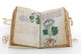 Voynich Manuscript Facsimile Edition