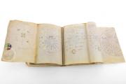 Voynich Manuscript, MS 408 - Beinecke Rare Book and Manuscript Library (New Haven, USA), Additional unidentified plant species in the Voynich Manuscript