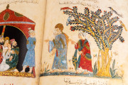 Maqamat Al-Hariri, Paris, Bibliothèque Nationale de France, ms. arabe 5847 − Photo 20