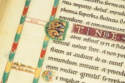 Gospels of Henry the Lion, Wolfenbüttel, Herzog August Bibliothek, Cod. Guelf. 105 Noviss. 2° − Photo 15