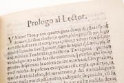 Don Quixote de la Mancha. Editio Princeps, Toledo, Biblioteca del Cigarral del Carmen, KR1378 − Photo 8