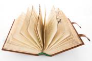 Lemberg Gospels, Warsaw, Biblioteka Narodowa, Rps 8101 III − Photo 20