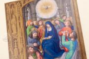 Prayer Book of John Albert I, Duke of Mecklenburg, Kassel, Universitätsbibliothek Kassel, 4° Ms. math. et art. 50 − Photo 3