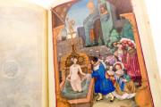Prayer Book of John Albert I, Duke of Mecklenburg, Kassel, Universitätsbibliothek Kassel, 4° Ms. math. et art. 50 − Photo 7