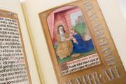 Prayer Book of John Albert I, Duke of Mecklenburg, Kassel, Universitätsbibliothek Kassel, 4° Ms. math. et art. 50 − Photo 14