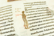 Codex Aureus of Echternach, Nuremberg, Germanisches Nationalmuseum, Hs. 156142 − Photo 8