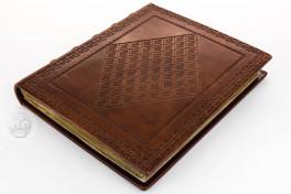 Der Dioskurides Neapolitanus, Naples, Biblioteca Nazionale Vittorio Emanuele III, Ms. ex Vindob. gr. 1, Der Dioskurides Neapolitanus facsimile edition by Adeva.