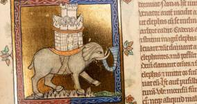 The Peterborough Bestiary: A Medieval Bedtime Story