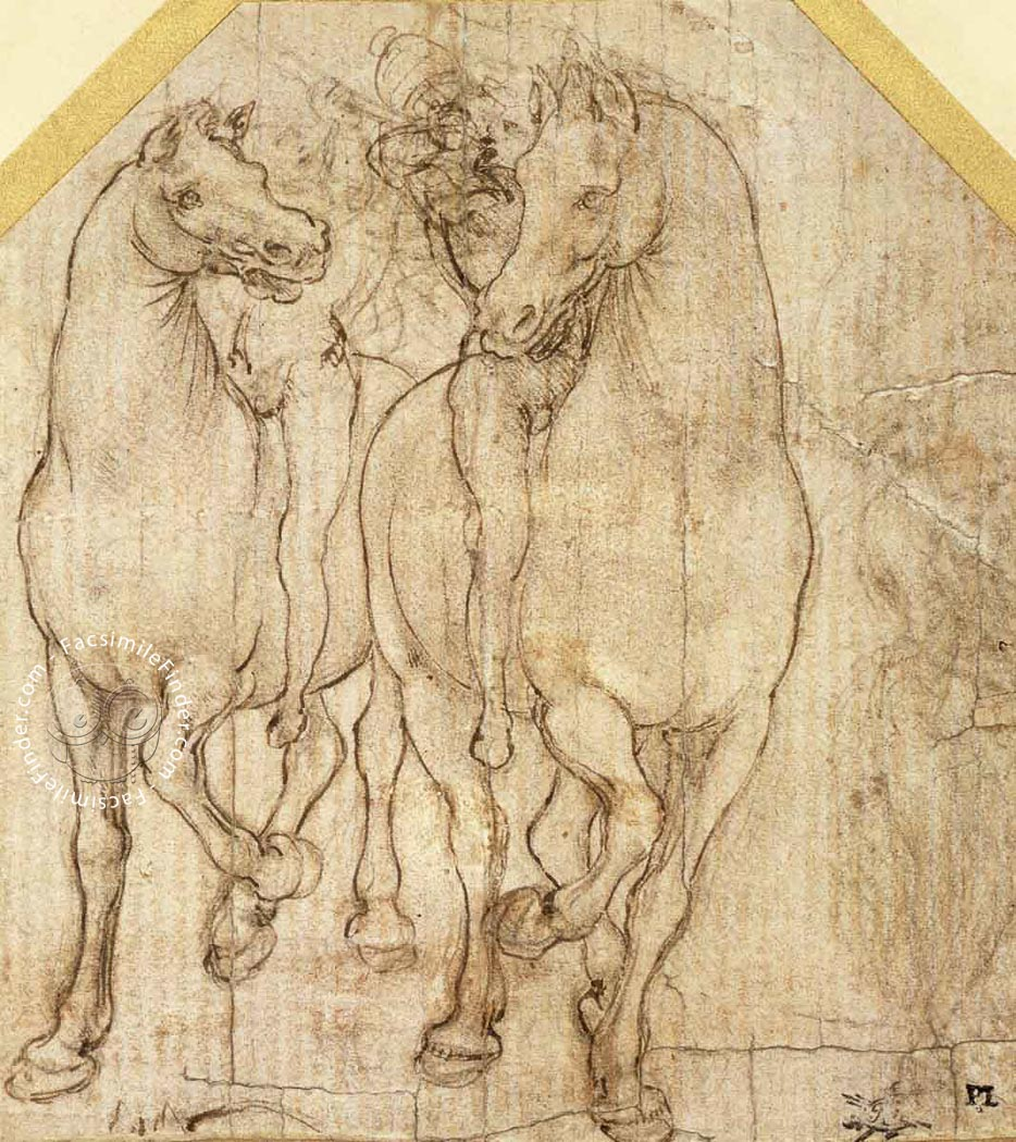 Drawings of Leonardo da Vinci and his circle - British Collections ...